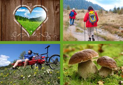 Gasthof Pension Retteneggerhof - Urlaub - Erholung - Wandern - Motorradtouren Motorradfahren - Sommerurlaub - Schwammerlsuchen -  Biken - Rettenegg - Waldheimat - Joglland.
